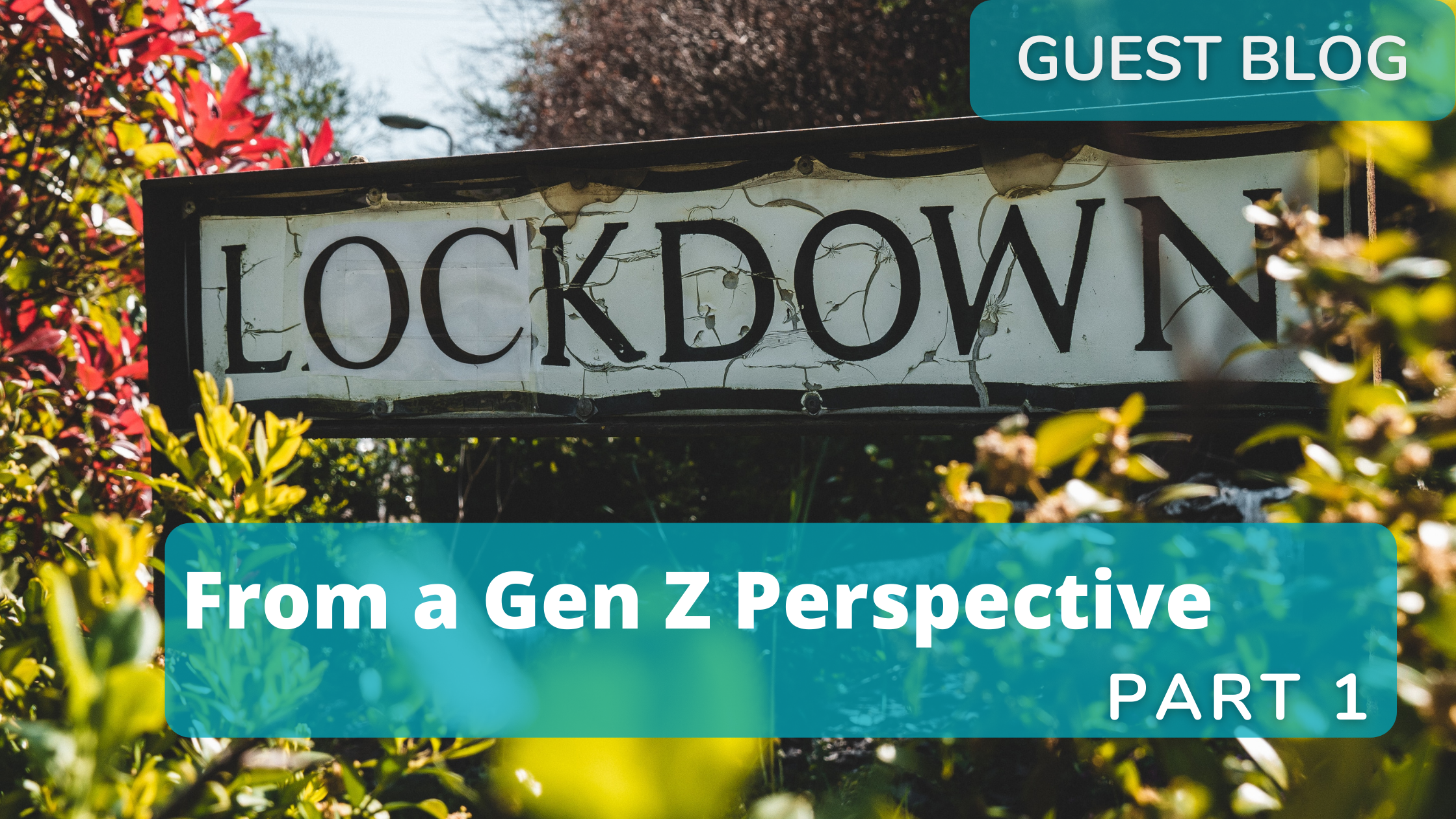 lockdown lessons part 1